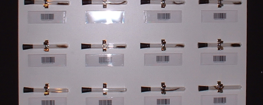 One of the panels containing hair samples and barcodes that comprise Homo indicium.